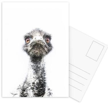 Emu cartes postales