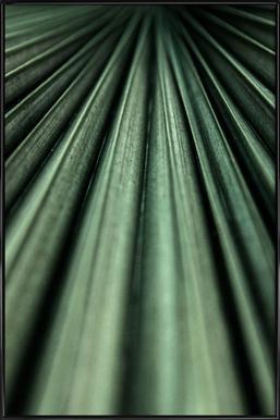 Green Palm affiche encadrée