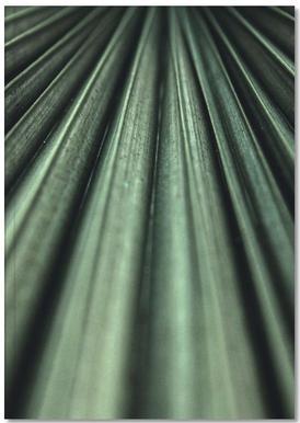 Green Palm Carnet de note