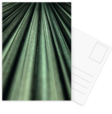 Green Palm cartes postales