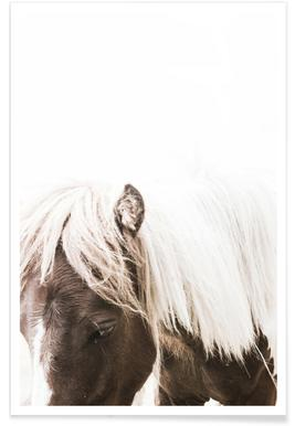 Horse II affiche
