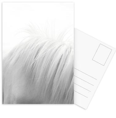 Horse Mane III cartes postales