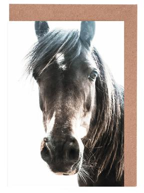 Horse cartes de vœux