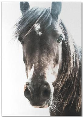 Horse bloc-notes