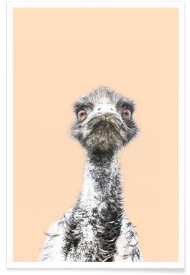 Orange Emu affiche