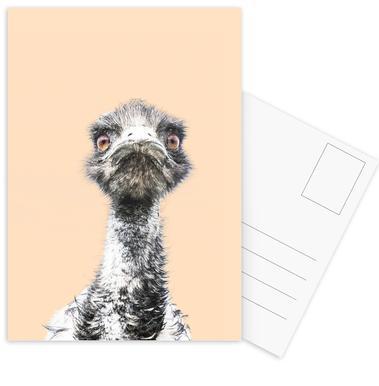 Orange Emu cartes postales