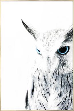 Owl II affiche sous cadre en aluminium