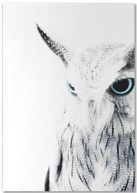 Owl II bloc-notes