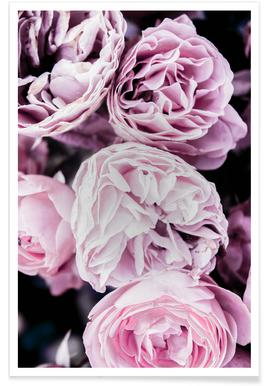 Pink flowers II Poster