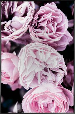 Pink flowers II affiche encadrée