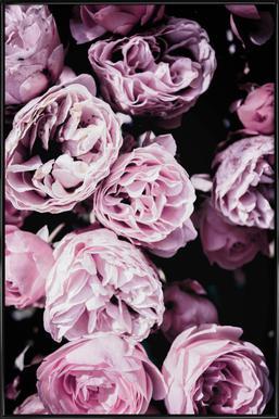 Pink Flowers III affiche encadrée
