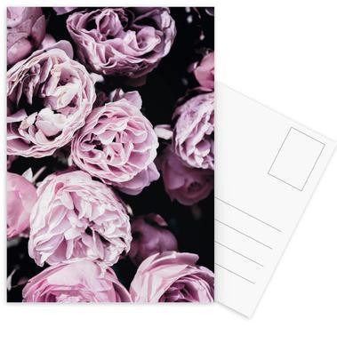 Pink Flowers III Postcard Set
