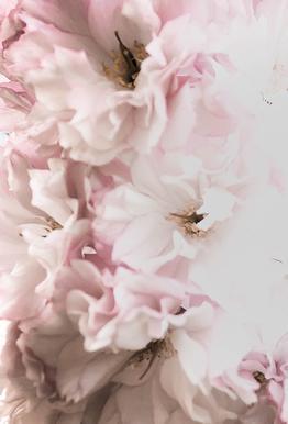 Pink Flowers tableau en verre