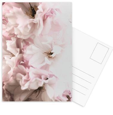 Pink Flowers cartes postales