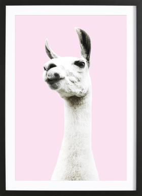 Pink Llama affiche sous cadre en bois