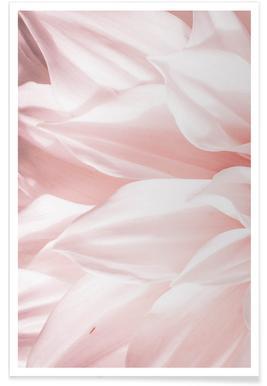 Pink Petals affiche