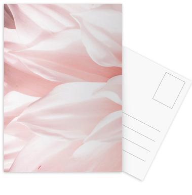 Pink Petals cartes postales