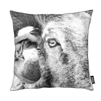 R.A.M. II Coussin