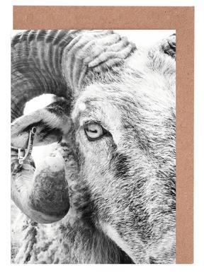 R.A.M. II cartes de vœux