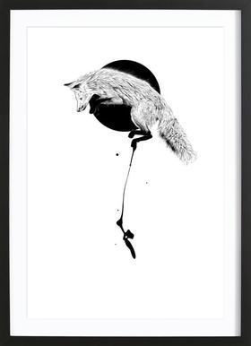 Black Fox ingelijste print