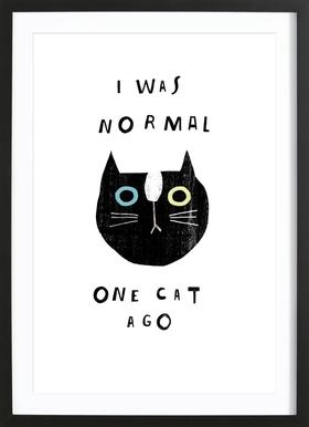 Catisfaction 9 Poster in Wooden Frame