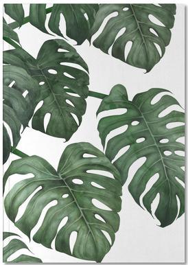 Tropical No. 6 Notitieboekje