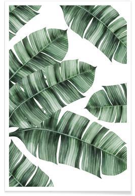 Tropical No. 8 Affiche