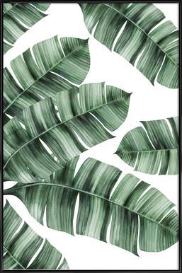 Tropical No. 8 Affiche sous cadre standard
