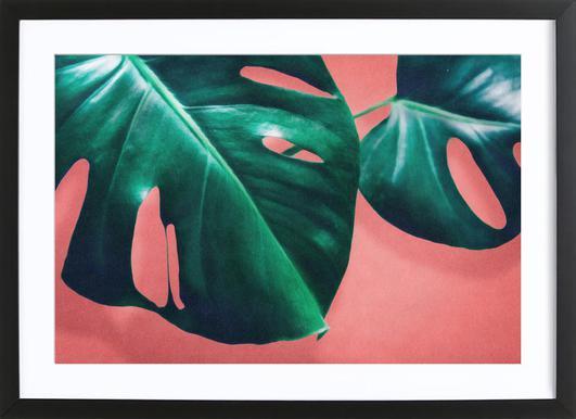 Mooie Posters Kopen : Ingelijste bladeren en planten posters online kopen juniqe