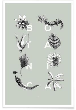 Botanica Letters Poster