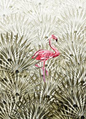 Miami Flamingo canvas doek