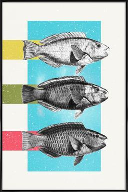 Fishes Framed Poster