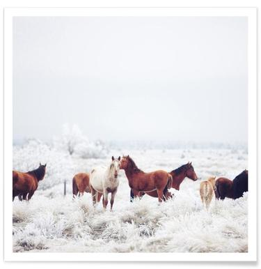 Winter Horseland poster