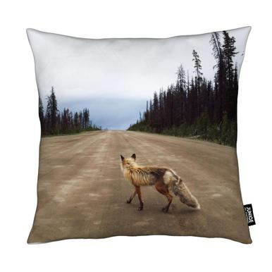 Road Fox Kussen