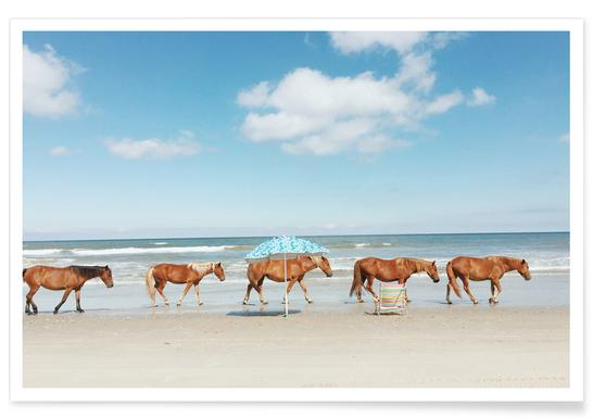Horses on Holiday Poster