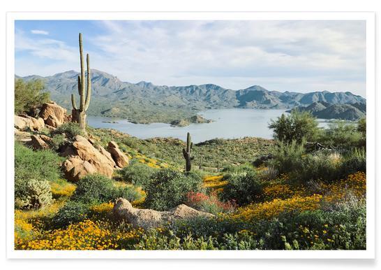 Blooming Desert Affiche