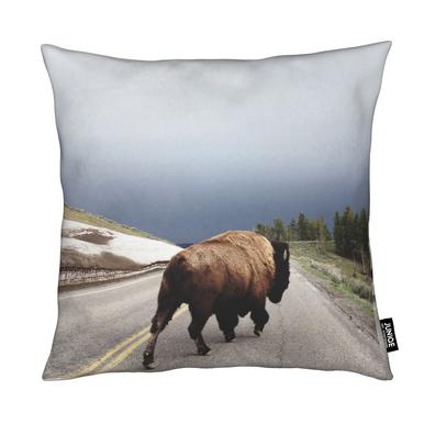 Street Walker Cushion