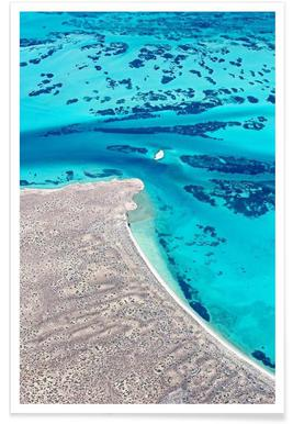 Shark Bay 6 Poster
