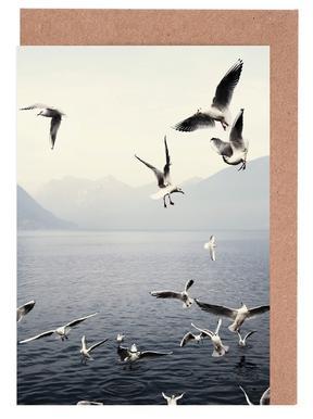 Seagulls Grußkartenset