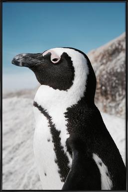 Penguin ingelijste poster