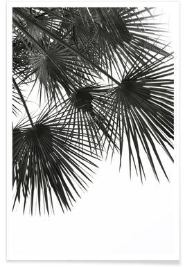 Endless Summer - Wind -Poster