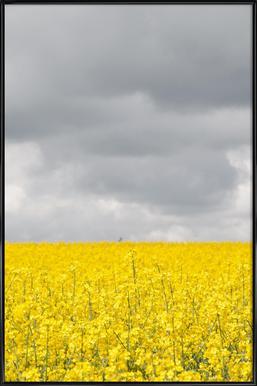 Grey Sky Meets Yellow Fields affiche encadrée