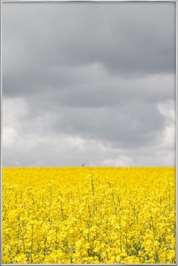 Grey Sky Meets Yellow Fields As Poster In Standard Frame Juniqe