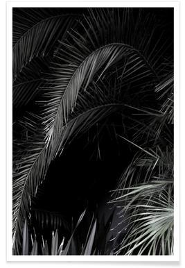 Tropical Garden 1/5 Poster