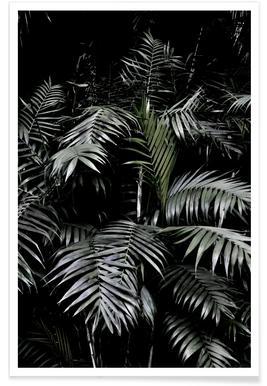 Tropical Garden 3/5 Poster