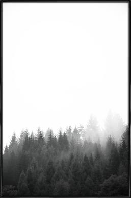Walk Through The Forest Poster im Kunststoffrahmen
