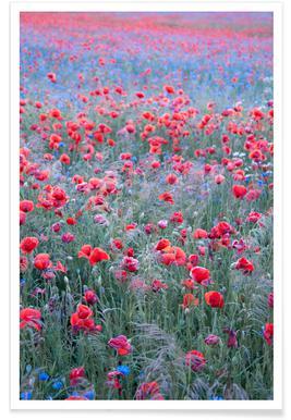 Poppy Seed Heaven poster