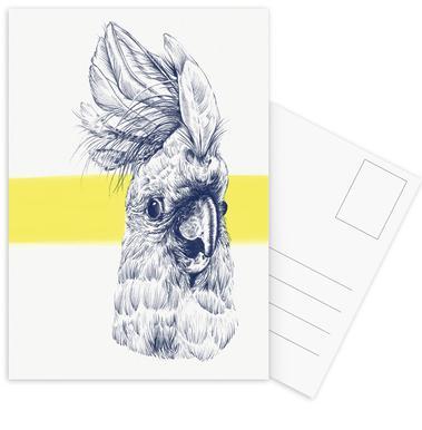 Kakadu Set de cartes postales