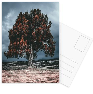 The Red Giant Tree Postcard Set