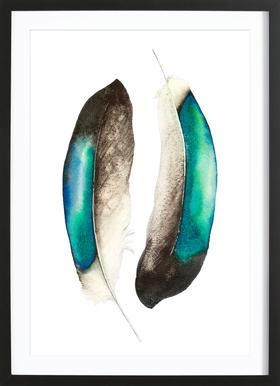 Feathers III Framed Print